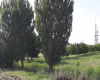 Yerevan, ,Land,For Sale,1035