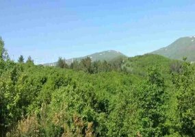 Yerevan, ,Land,For Sale,1037